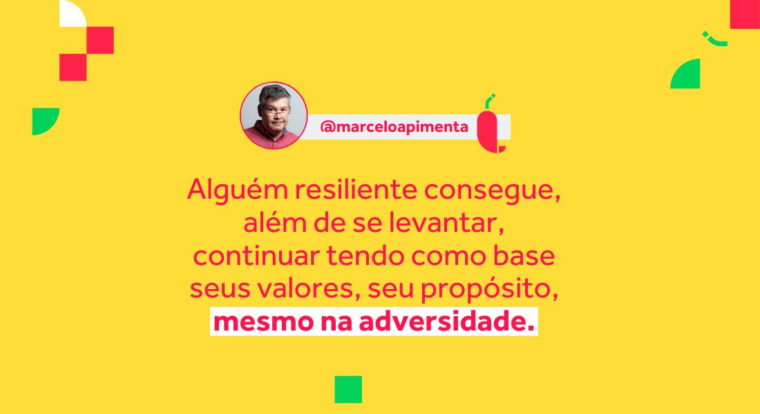 Resiliencia definicao